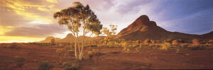 01511_haasts_bluff_nt_australia_748piece__89726