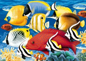 01512_coral_reef_500piece__98528