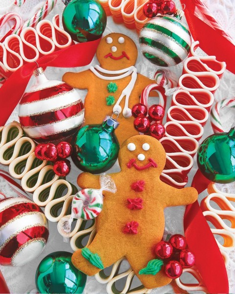 10565_Holiday_Treats__23325