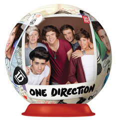 12151__One_Direction_Puzzle_Ball__16986