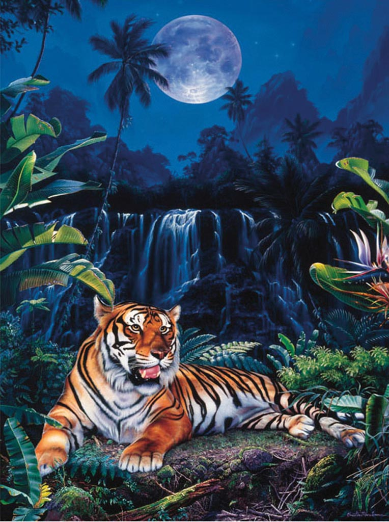 King Of Cars >> Ravensburger - 16077 - Tiger Paradise (Star Line) - 1000piece | Barneys News Box