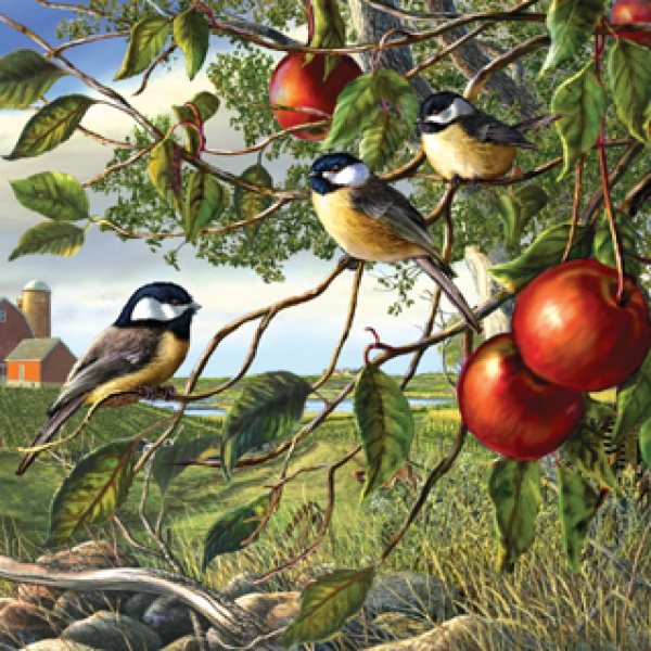 28450_chickadees_and_apples__93410