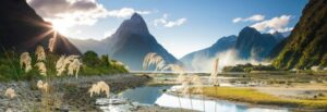 29606__Milford_Sound__PAN__51561
