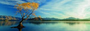 29673_Lake_Wanaka_PAN__11776