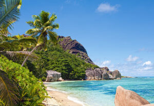300228_tropical_beach_seychelles__65689
