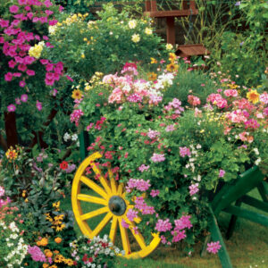 33-02508_Blooming_Cart__03977