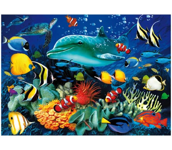 39186__Dolphin_Reef_3D_WEB__42757