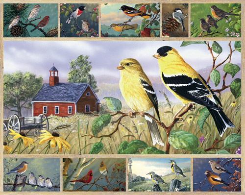 590_songbirds_1000piece__10493