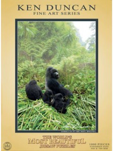 81904__Gorillas_in_the_Mist_Africa__92856
