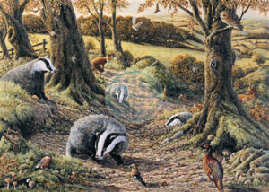 Badgers Dell