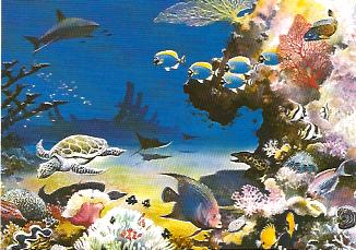 cr1a_0751_coral_reef_scan__41513