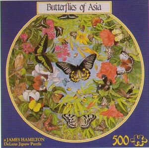 lba1_butterflies_of_asia__08545