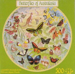 lba2_butterflies_of_australasia__17262