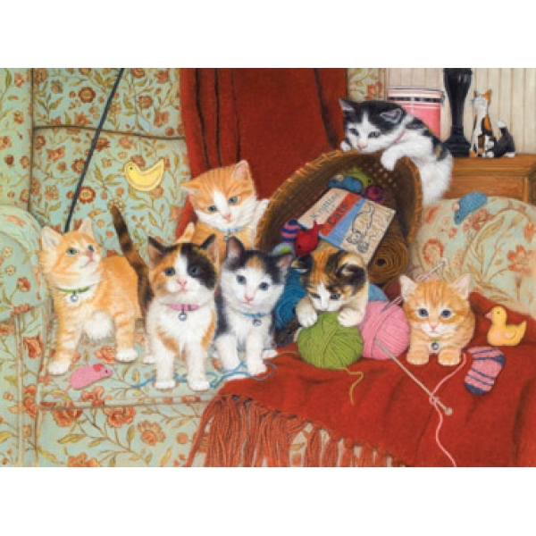 mpz6033_knitting_for_cats__04177