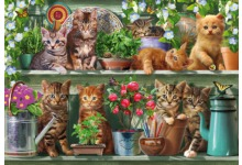 220x150.fit.701606 Kitchen Cats Maxi